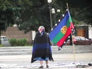 mapuche_bandera